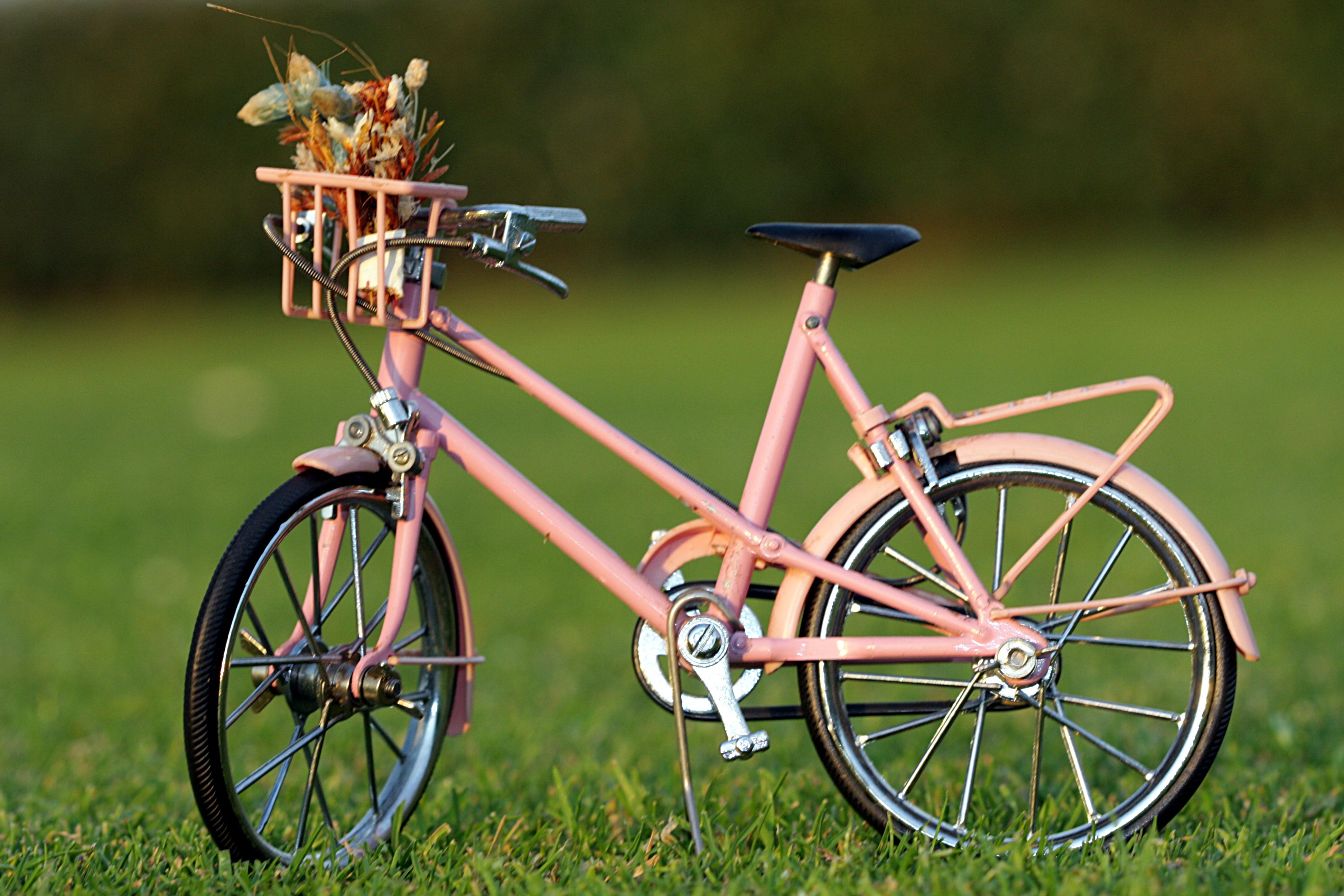 En bici y seguros
