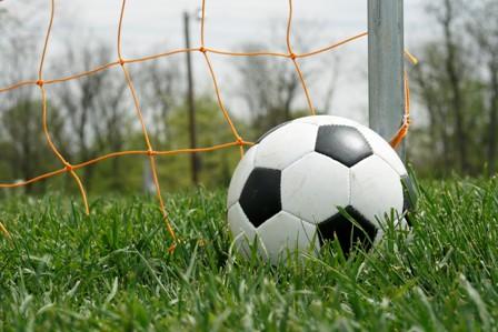 Comportamiento en los campos de fútbol