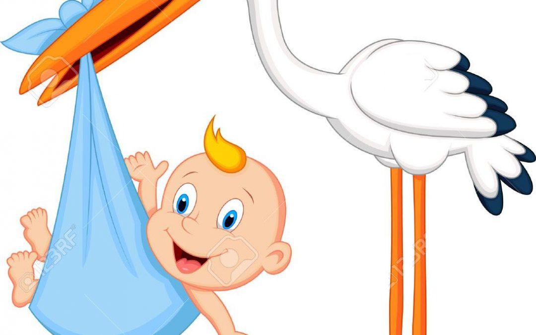 ¿De Dónde vienen los bebés? – Literatura infantil
